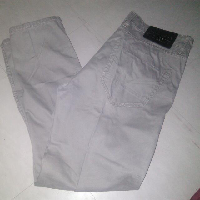 Paddocks Pants