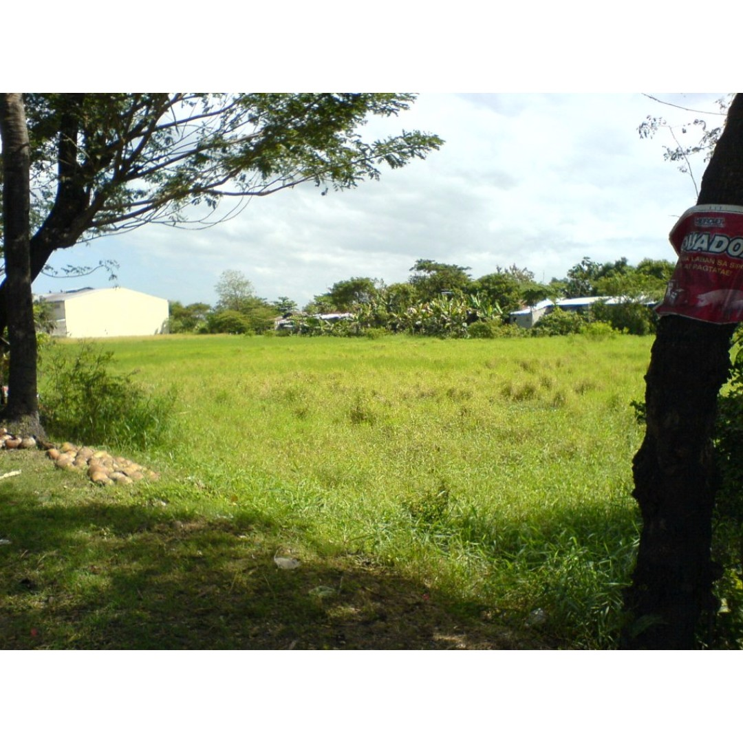 Vacant Lot in Pulilan Bulacan for lease/rent