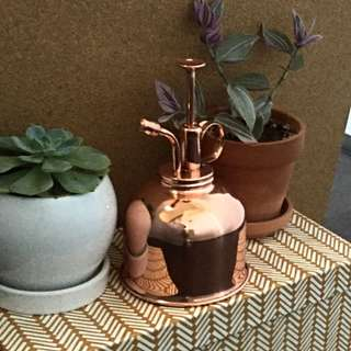 AIRPLANT & INDOOR PLANT SPRAY MISTER