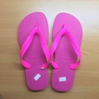 [All New] Havaianas Top Original 哈瓦仕 夾腳拖 Sandals  直購價 不敗經典款