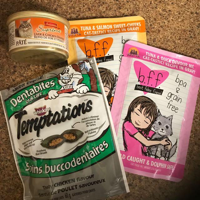 Cat Treats & Wet Food