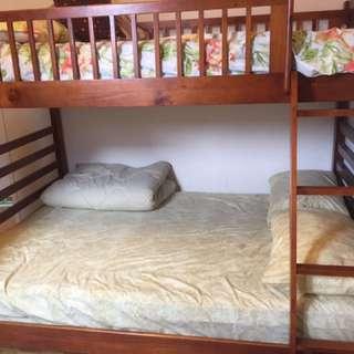 LEON'S Starship Bunk Bed Set- Chocolate Cherry