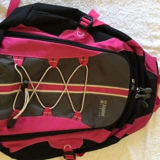 Alpine travel backpack - authentic