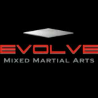 Evolve Mixed Martial Arts Membership (4 Months)