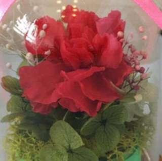 保鮮花!祝情人們永遠保鮮