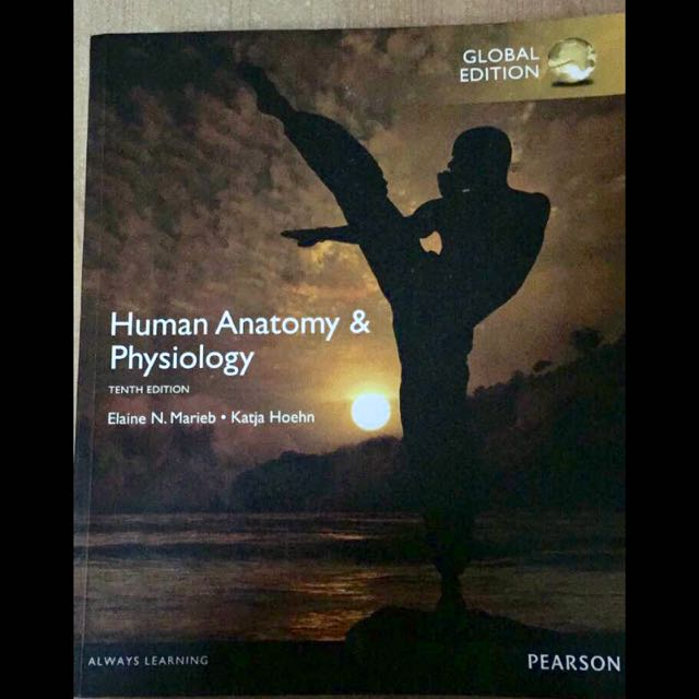 Pearson Human Anatomy Physiology Textbook Books Stationery