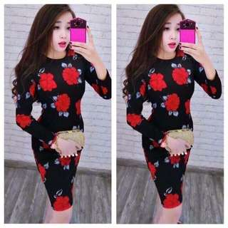 Long sleeve Fashion Dress