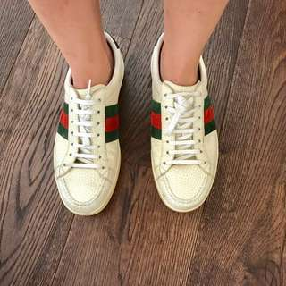 Gucci Classic Leather Trainers (Grainy Leather)