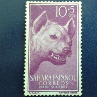 Spanish Sahara Stamp. 1957-11-23. -Animals, Striped Hyena.  Please Make An Offer.