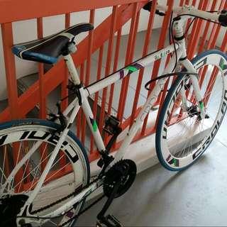 Fixie Bicycle (Mod)