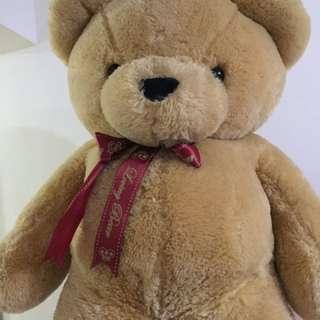 浪漫求婚熊寶寶