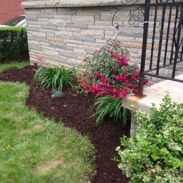 Ann's Landscaping Plus Lawn Cuts