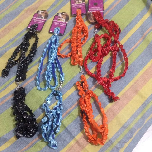 Lacey Harness And Leash