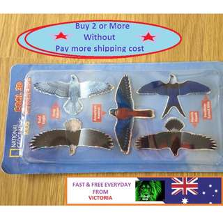 Cool-3D-Stickers-EAGLE-National-Geographic-kids