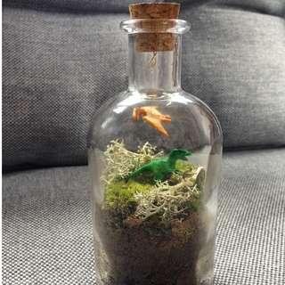 Tiny Dinosaur World Terrarium