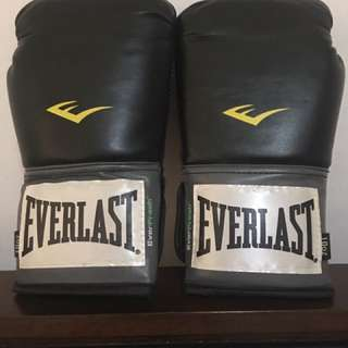 Boxing Gloves Everlast