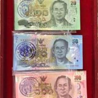 泰國招財錢母