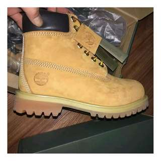 timberland10361男女款大黃靴10061