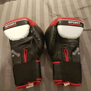 16oz Boxing Gloves