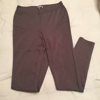 BCBG Riding Pants