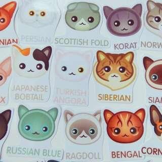 Stiker Kucing Isi 15 Pcs