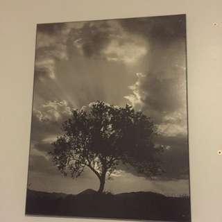 Framed Art/ Picture