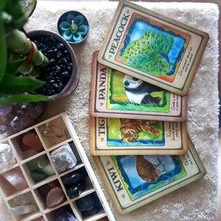 Animal Spirit Guide Oracle Cards