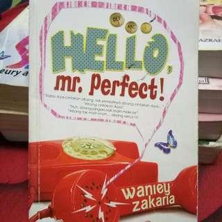 HELLO MR PERFECT!