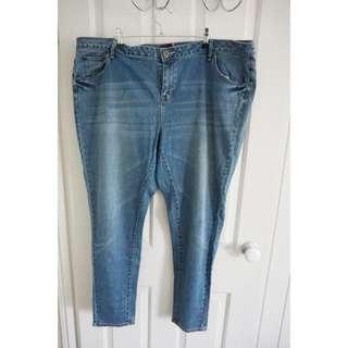Mink Denim Skinny Jeans Size 22 Plus Size
