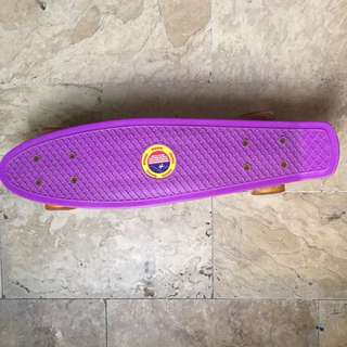 Penny Board/Skateboard