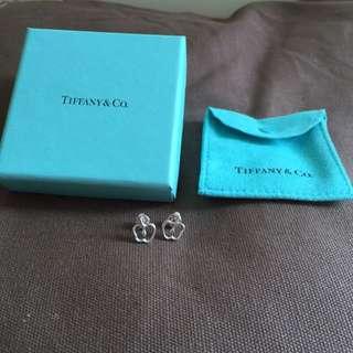Tiffany & Co. Earrings (100% Real, 98% New)