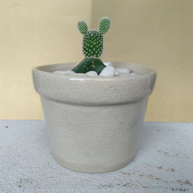 Pot Bunga Porcelain Classic Kaktus Hanya Contoh Display Home