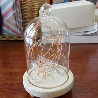 6 X Small Cloche With Twinkle Lights