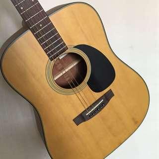 Takamine D series Guitar