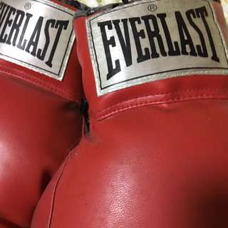 Everlast Boxing Gloves (used)