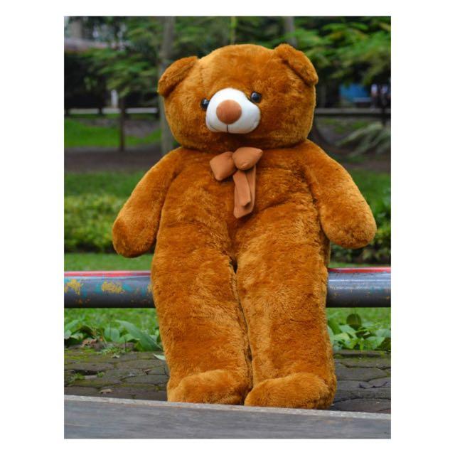 Boneka Raja Boneka Lazada Source · Boneka Beruang Teddy Bear Super Jumbo  Toys   Collectibles Toys 8da227e553