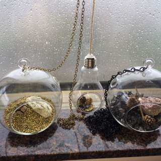 Glass Hanging Air Plant Terrarium