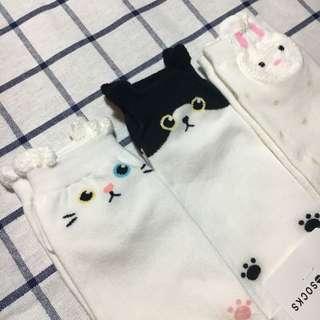 🚚 動物 兔子貓咪 狗狗 短襪