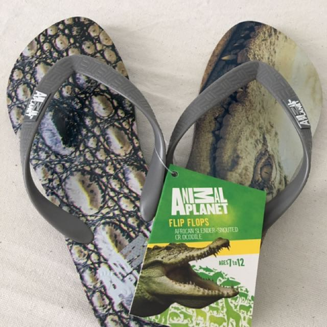 Animal Planet FlipFlops For Boys 7-12 Years Old