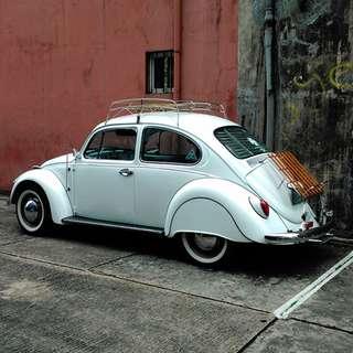 Volkswagen Beetle 72 Econo German Beetle