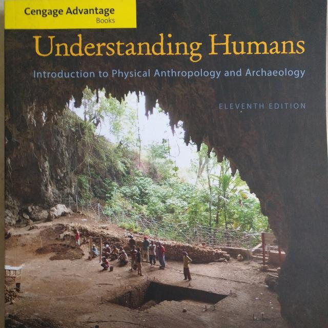 Introduction To Physically Anthropology And Archaeology
