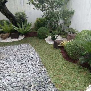 we do landscape services