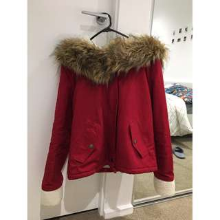 Winter Jacket (price is negotiable)