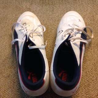 Puma Soccer Shoe