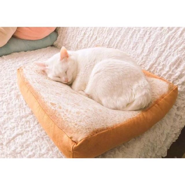 貓咪/寵物吐司墊