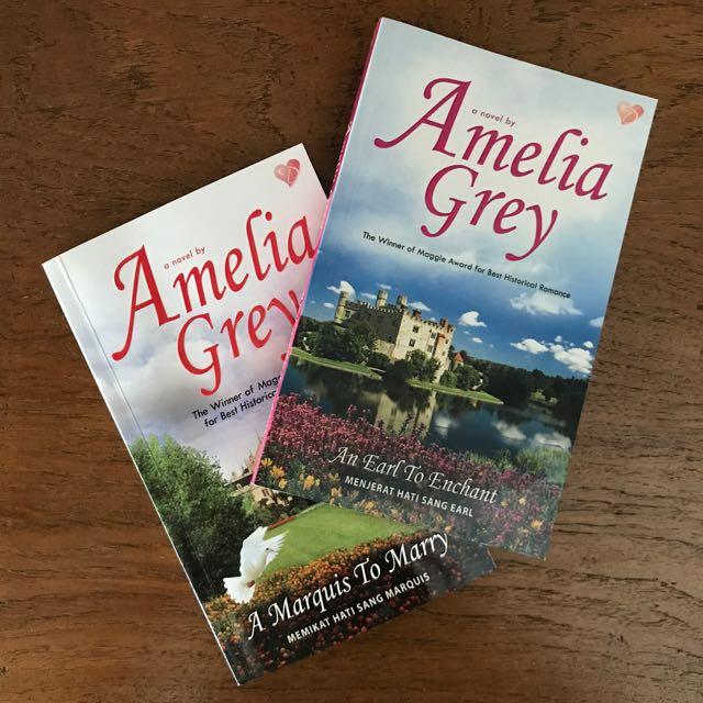 2 Novels by Amelia Grey