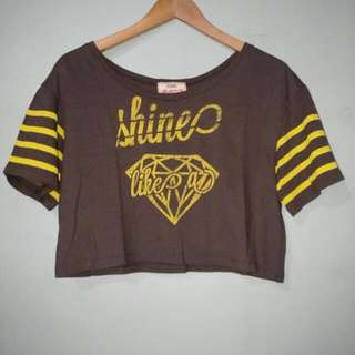 Shine Crop Top