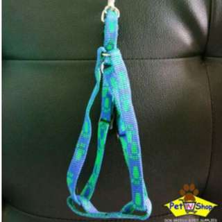 Leash with Harness for Small Breed