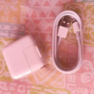 Apple USB and Adapter