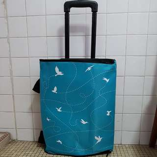 Designer hand carry luggage bag by INC